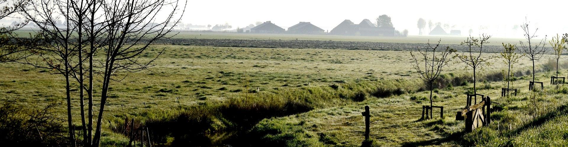 Panorama boerderij